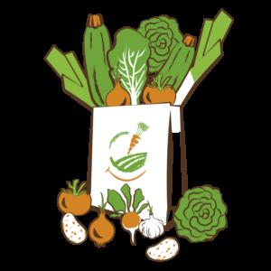 Panier de légumes XL