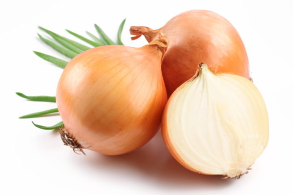 Oignons jaunes bio Onion